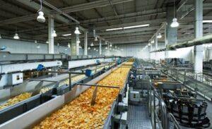 liniya-po-proizvodstvu-chipsov